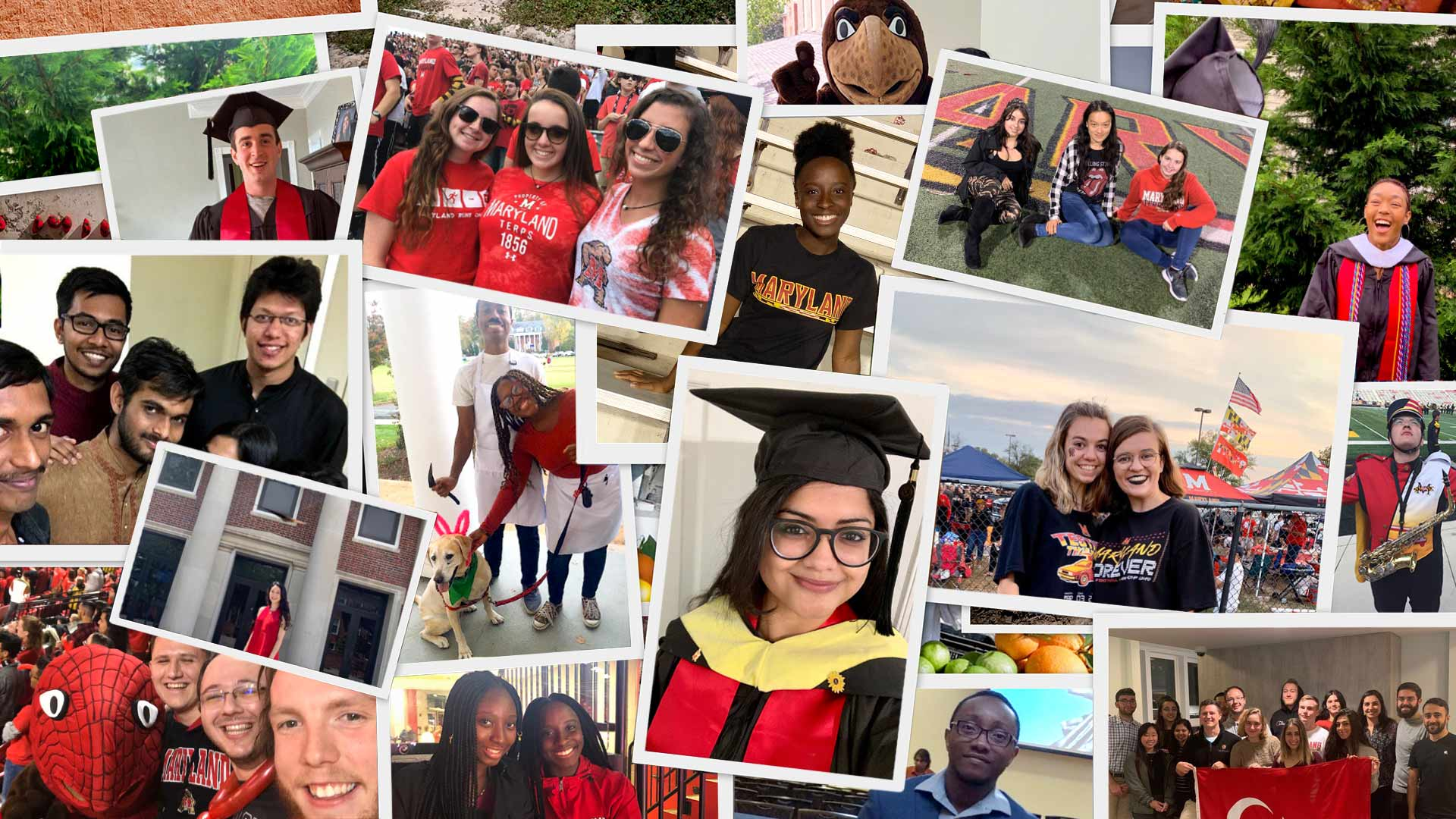 Leading up to today's virtual commencement ceremony, UMD invited Spring 2020 graduates to share photos, videos and messages of memories, experiences and hope with fellow Terps using the hashtag #UMDgrad on social media. (Photos courtesy of students and their families; frames by iStock; collage by Stephanie S. Cordle)