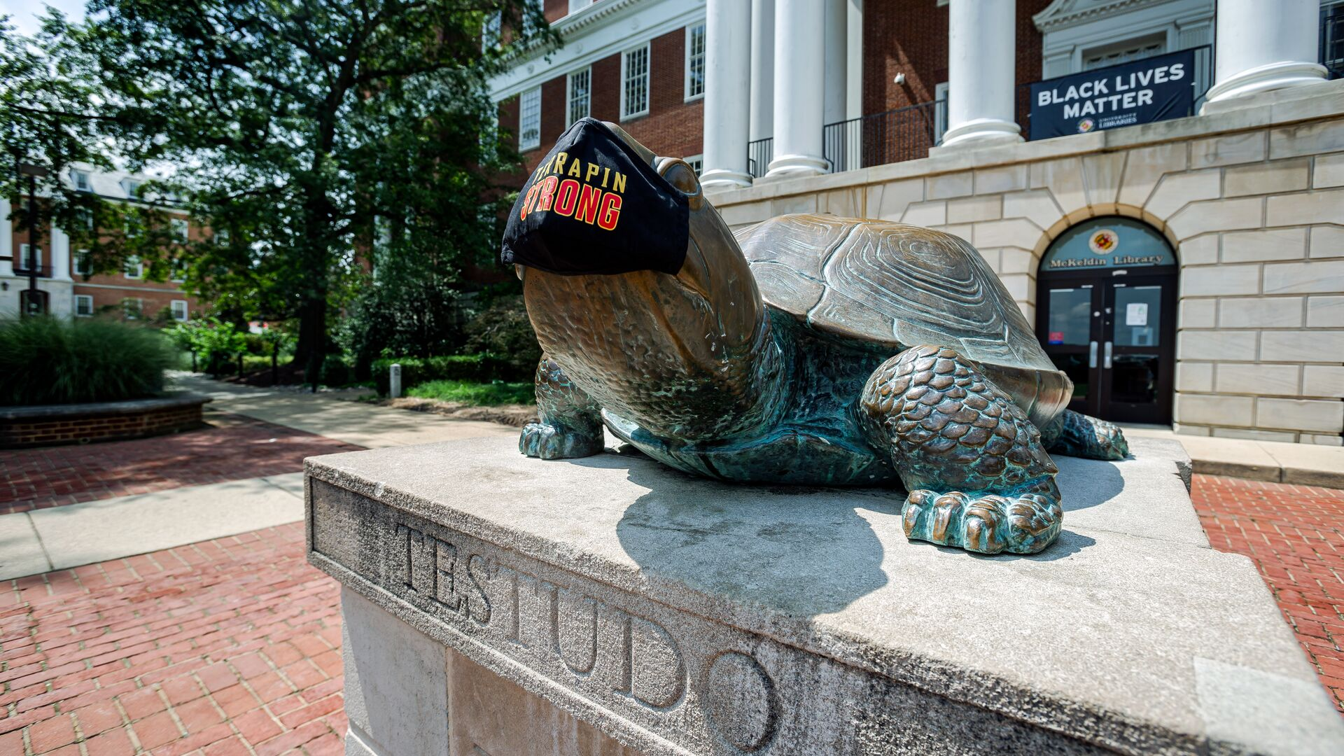 Photo of Testudo statue with TerrapinSTRONG mask